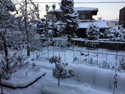2016年大雪1.jpg