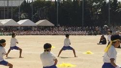 たつ運動会2.jpg