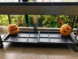 みのうかぼちゃ.jpg
