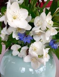 ニゲラと白い花.jpg