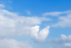ハート雲.jpg