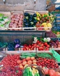 果物屋さん2.jpg