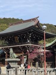 宮地嶽神社3.jpg