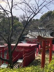 宮地嶽神社続2.jpg