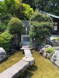 近江神宮6.jpg