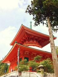 高野山結2.JPG