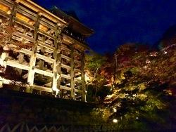 清水寺ライトアップ5.jpg