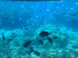 潜水艇より.jpg