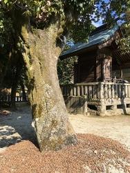 日田神社3.jpg