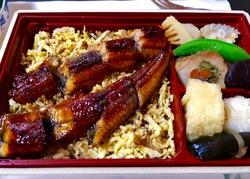 梅の花鰻弁当.jpg
